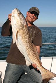 Biloxi, MS Redfish