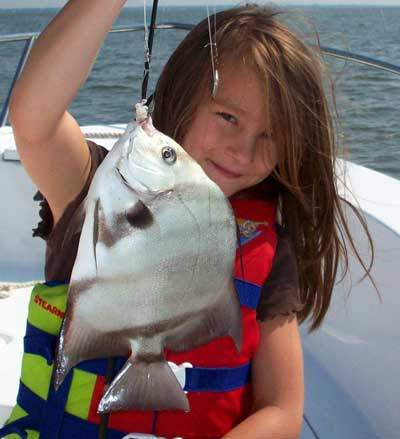 Fish types found fishing in biloxi mississippi and gulf for Types of fish in the gulf of mexico